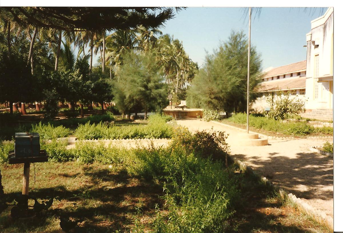Garden & Fishpond behind Sundram (also at the back of Pujya Bapuji's Kutir) - You can also see the stand for bee-hive (for honey production) at bottom left - March 1990