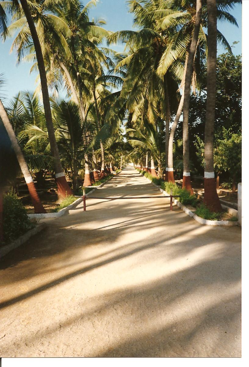Path to Guruji quarters - March 1990